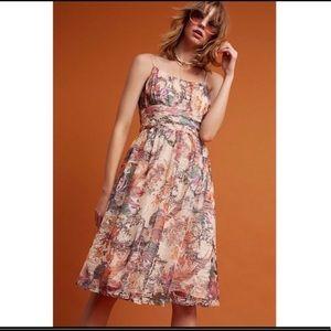 Beautiful Anthropologie Dress Sz 6 NWOT